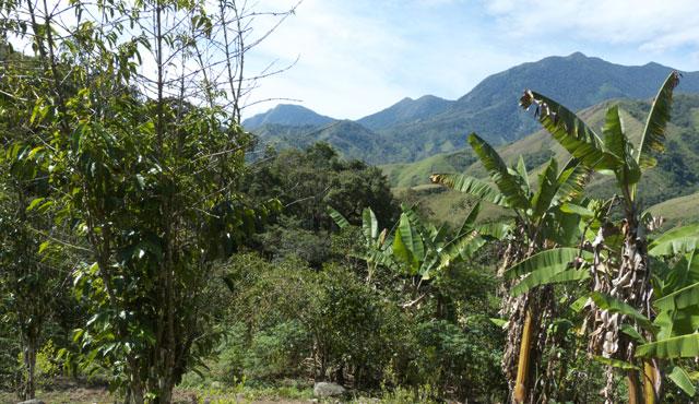Das Land der Kogi
