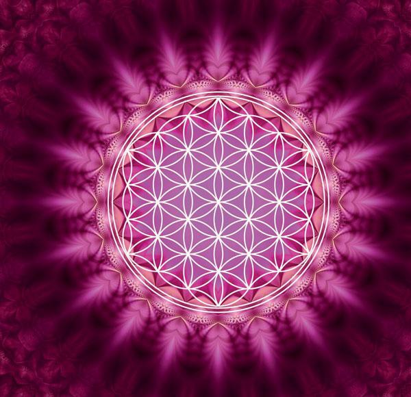 Das »Medikament Spiritualität«