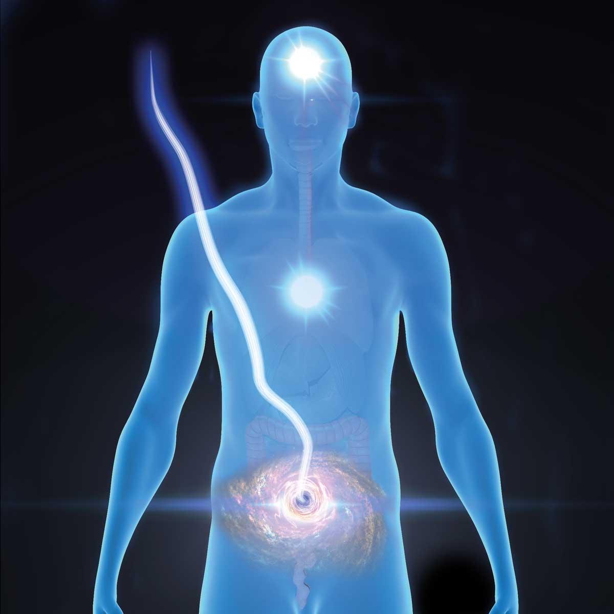 Bauchgehirn und Nabelschnur