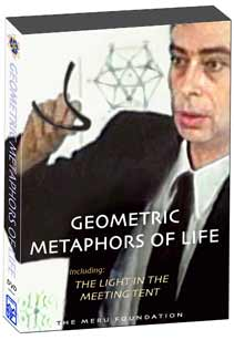 Geometric Metaphors of Life