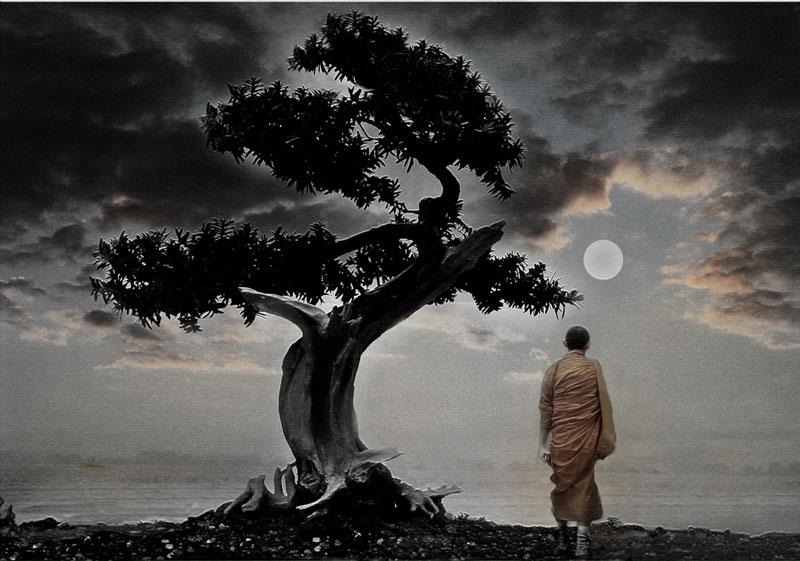Sucht und gesunde Abhängigkeit