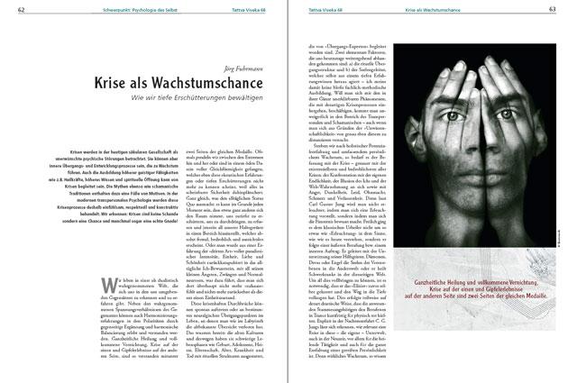 Jörg Fuhrmann-Artikel als PDF