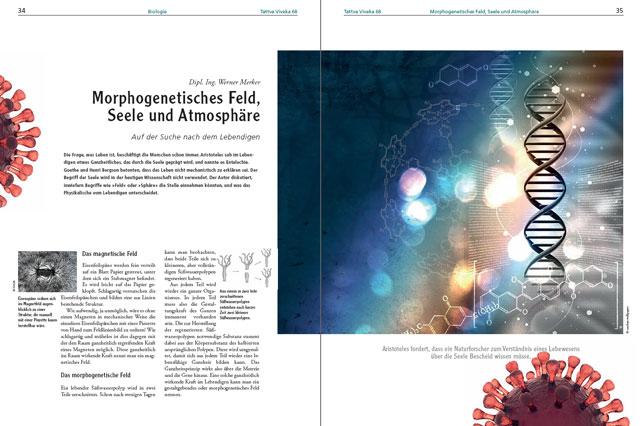 Werner Merker-Artikel als PDF
