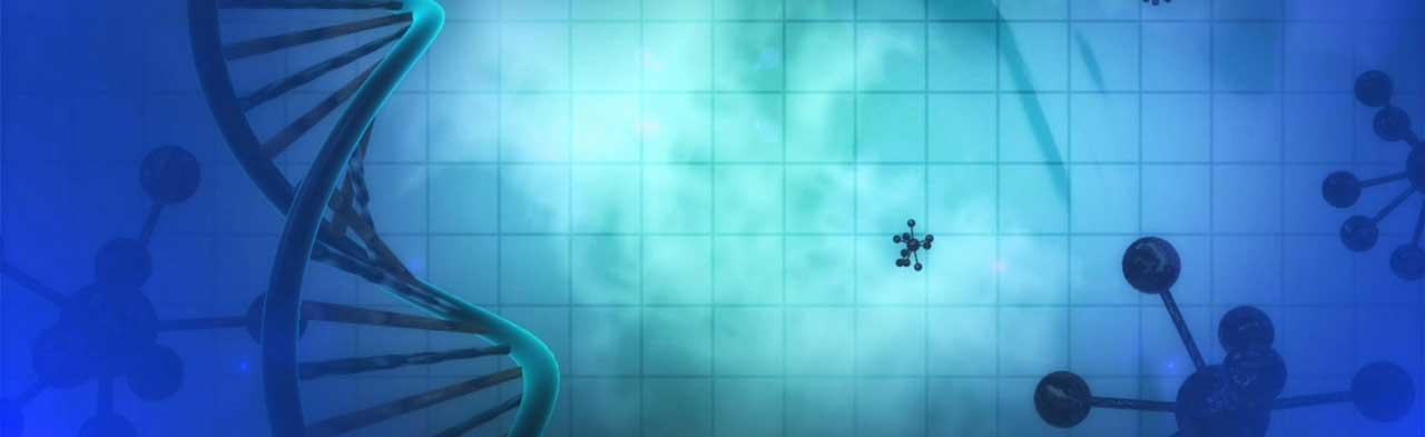 Morphogenetisches Feld, Seele und Atmosphäre