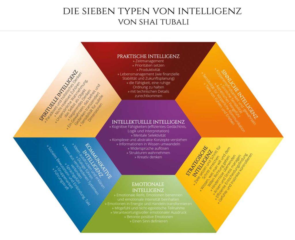 Tubali - Die sieben Typen von Intelligenz
