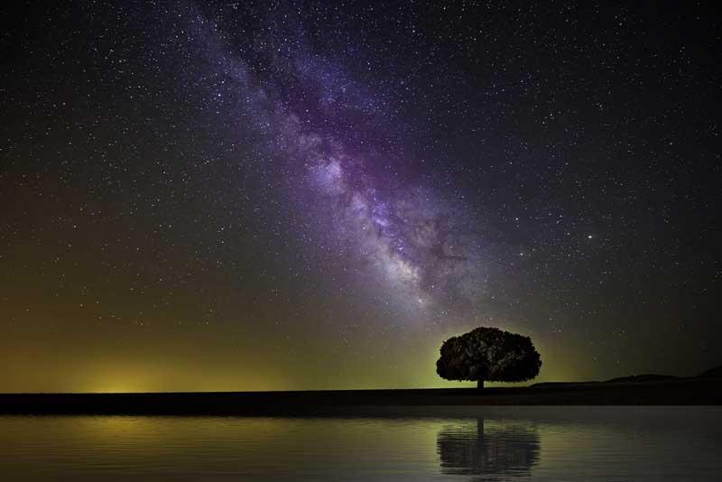 Teilhard de Chardins - Kosmogenese Teil 2 - Die Evolution des kosmischen Menschen