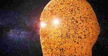 Von der Physik zur Metaphysik – die Frage nach dem Leben