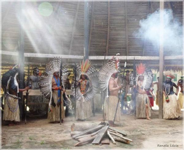 Heilwissen aus Amazonien