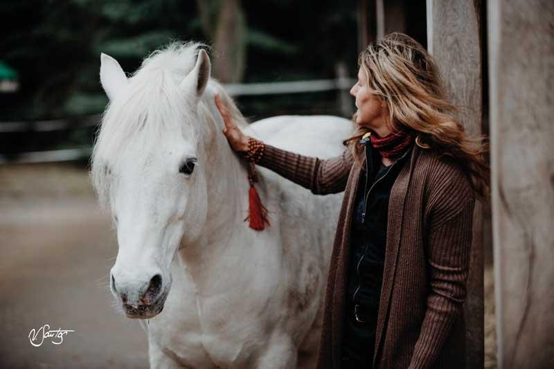 Mit Pferden auf dem inneren Weg