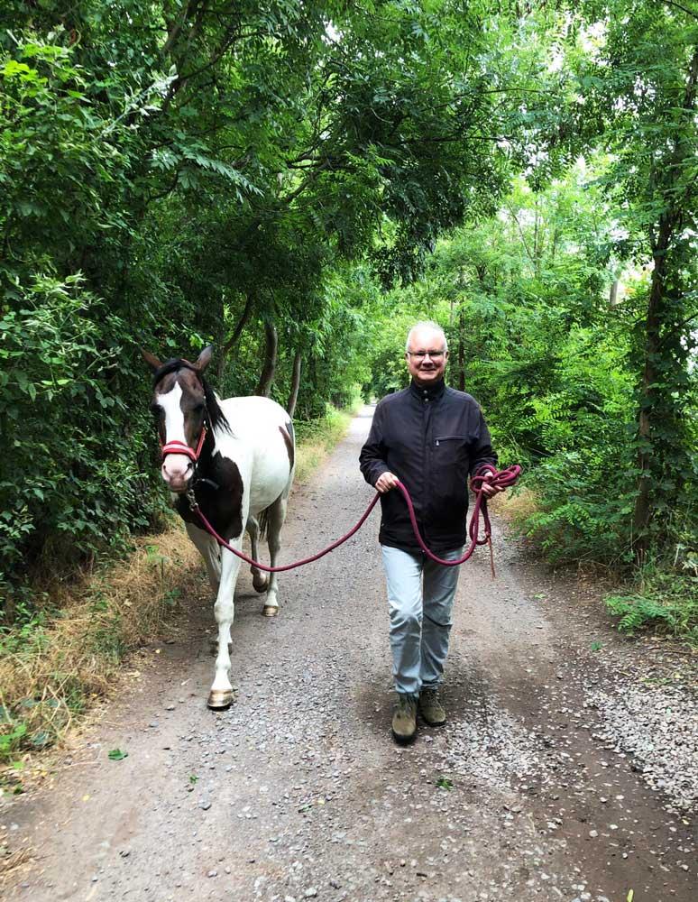 Meine Erfahrung mit dem Pferd Aleeshane