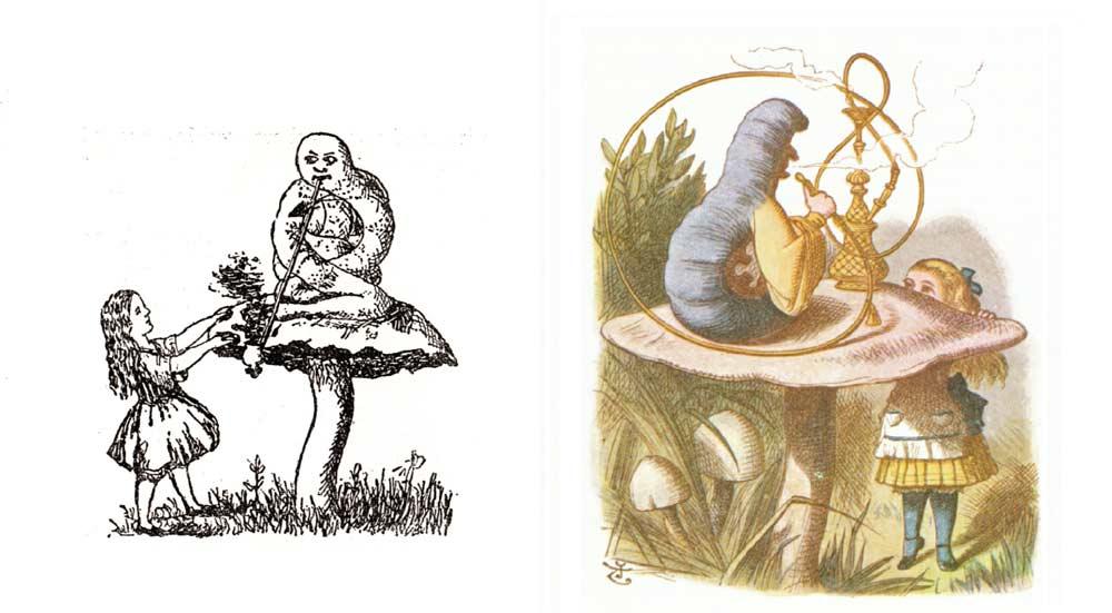 Alice besucht im Wunderland eine sprechende Raupe, die auf einem Pilz mit magischen Eigenschaften sitzt. Zeichnung von Lewis Carroll im ursprünglichen, handgeschriebenen Manuskript aus dem Jahre 1864. Daneben: Dieselbe Szene gezeichnet von John Tenniel, dem Illustrator der Buchausgabe von 1865
