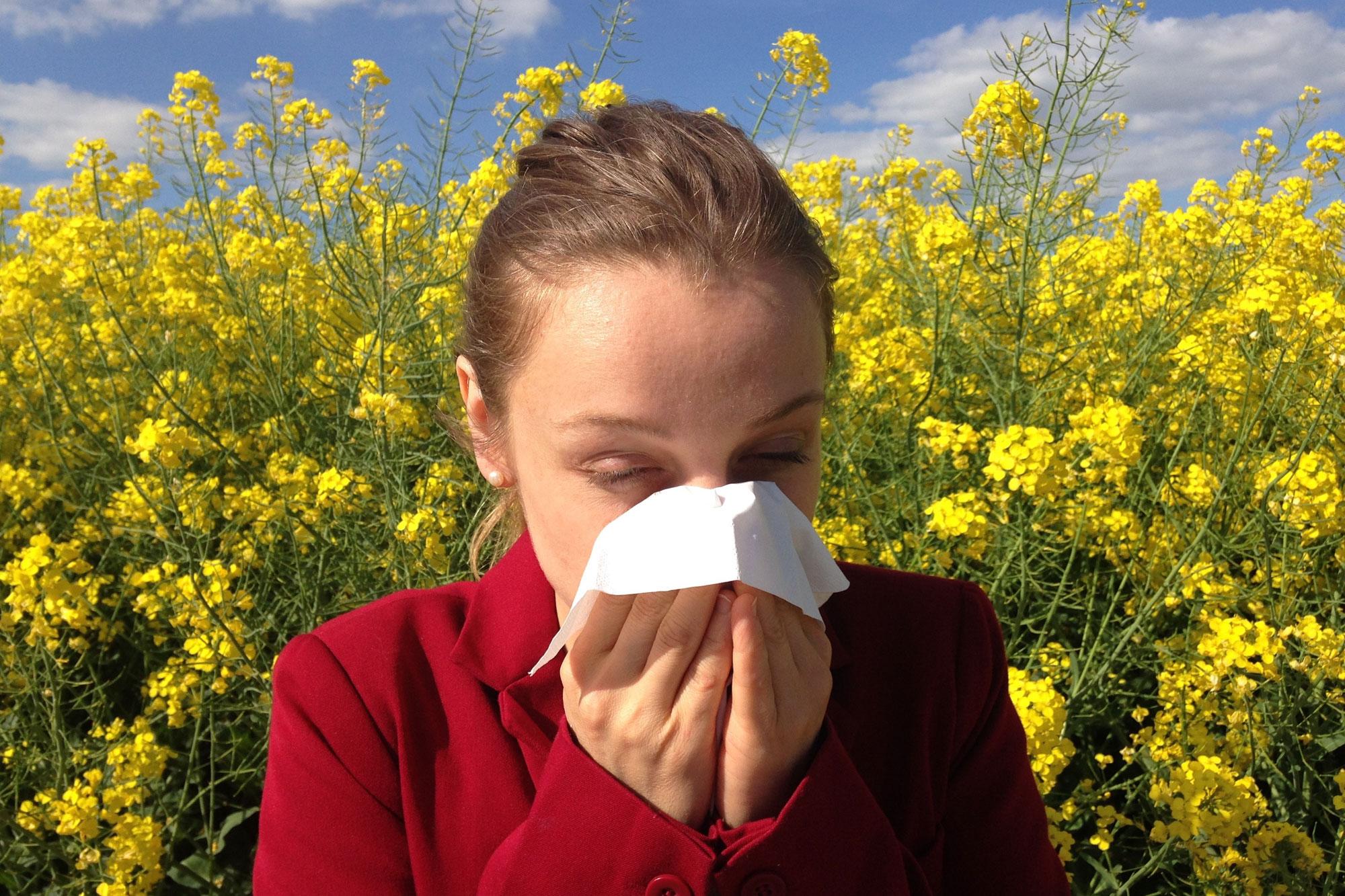 Asthma und Atemwegsallergien sind heilbar